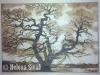 Tree Landscape by Helena Sivak