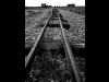 Tracks by John Chase